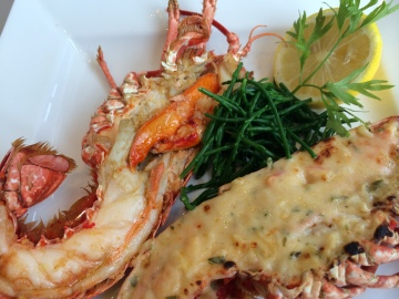 Lobster Grilled or Thermidor